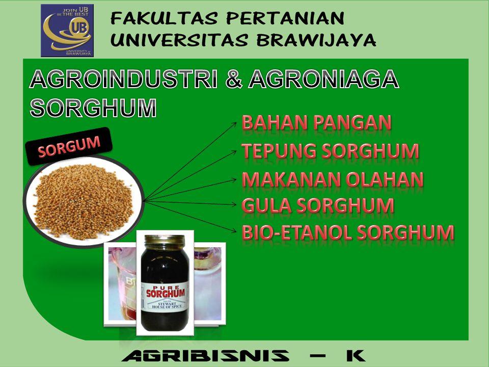 AGROINDUSTRI & AGRONIAGA SORGHUM