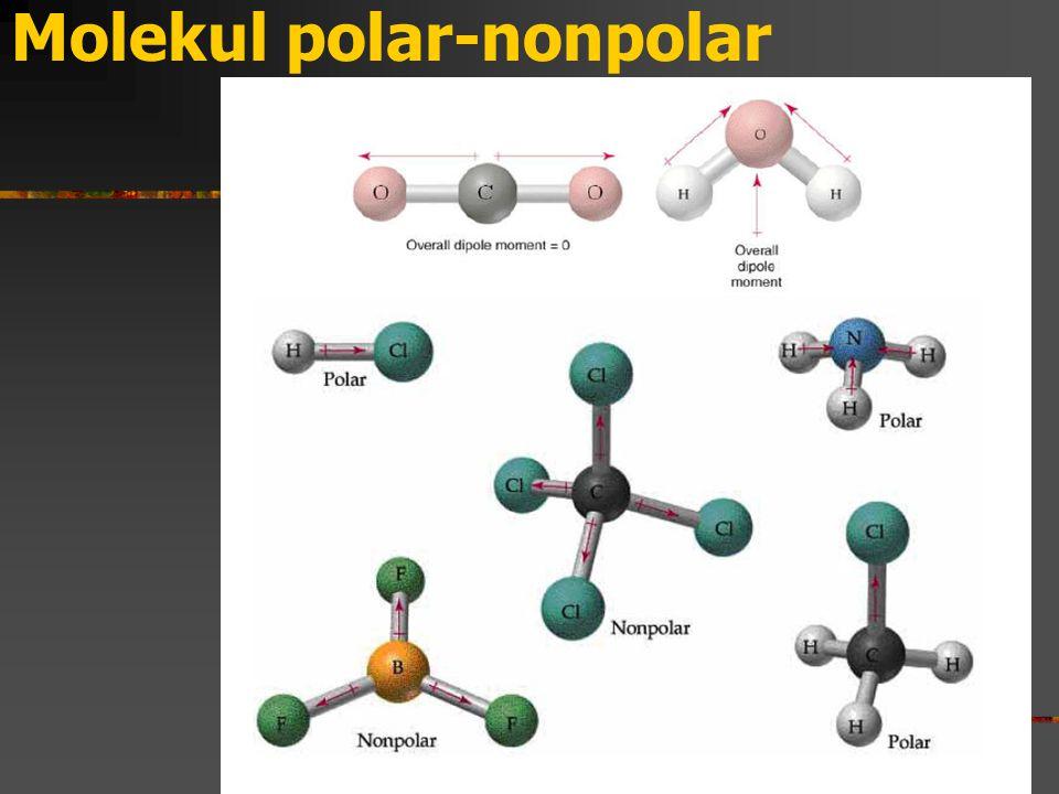 Molekul polar-nonpolar