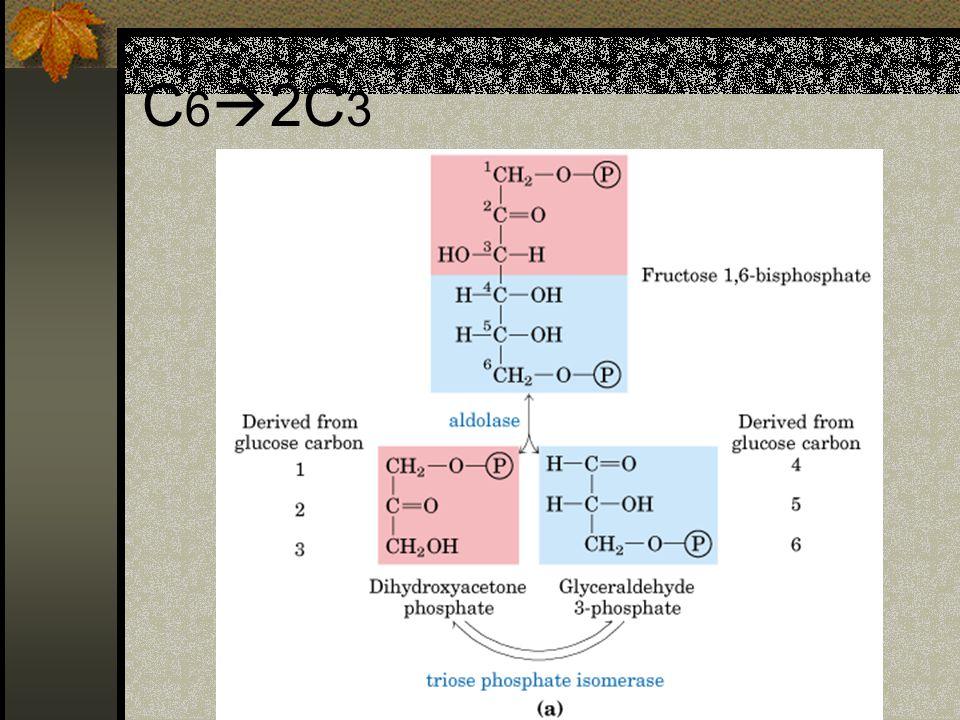 C62C3