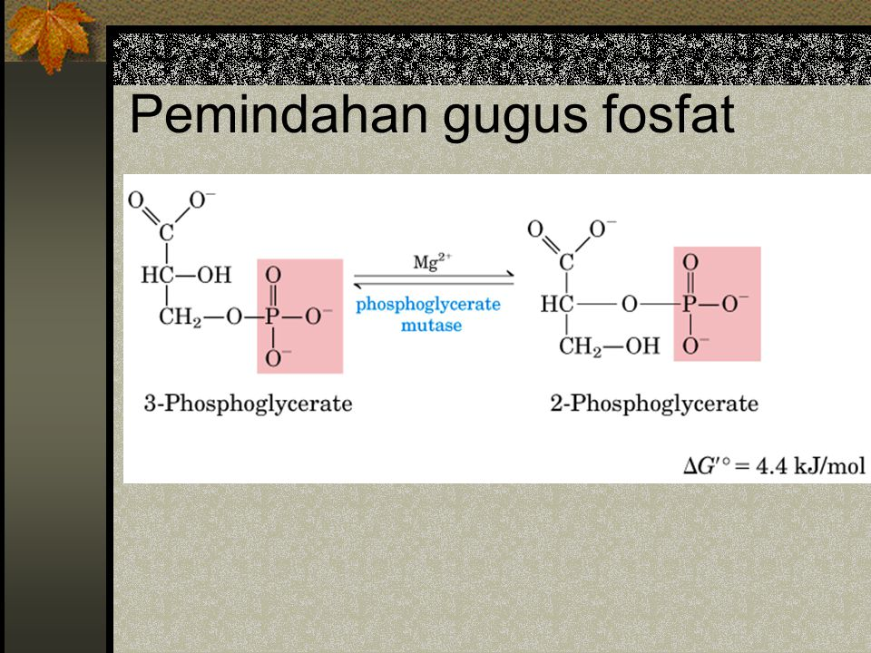 Pemindahan gugus fosfat
