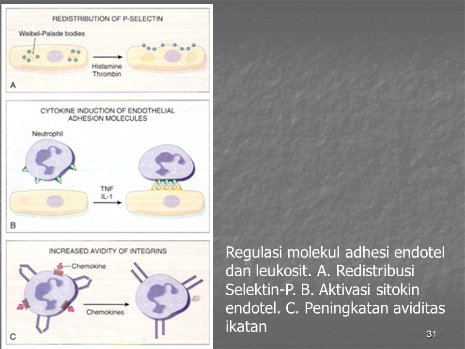 Regulasi molekul adhesi endotel dan leukosit. A