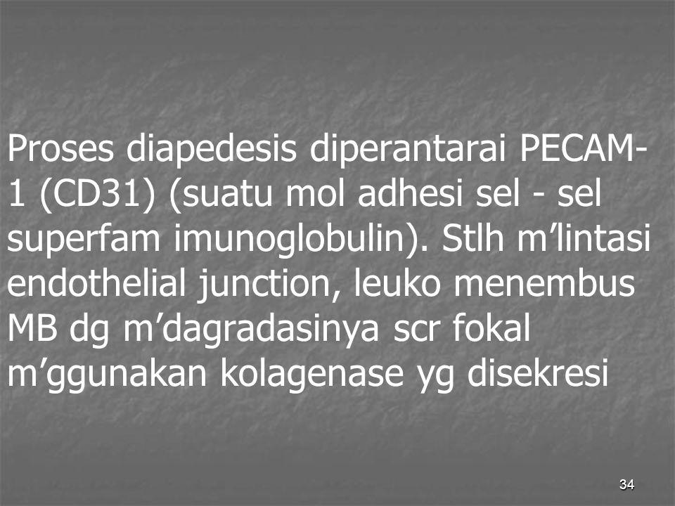 Proses diapedesis diperantarai PECAM-1 (CD31) (suatu mol adhesi sel - sel superfam imunoglobulin).