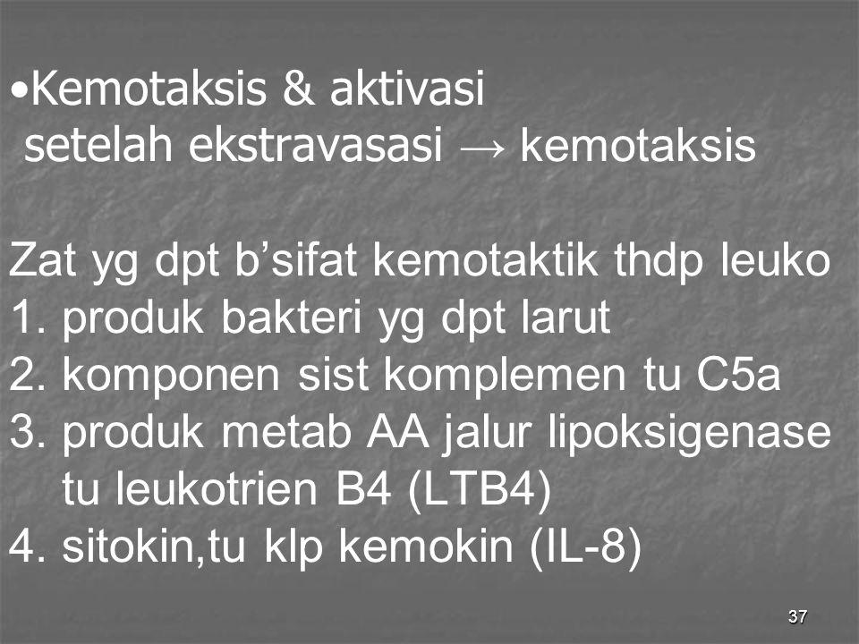 Kemotaksis & aktivasi setelah ekstravasasi → kemotaksis Zat yg dpt b'sifat kemotaktik thdp leuko 1.