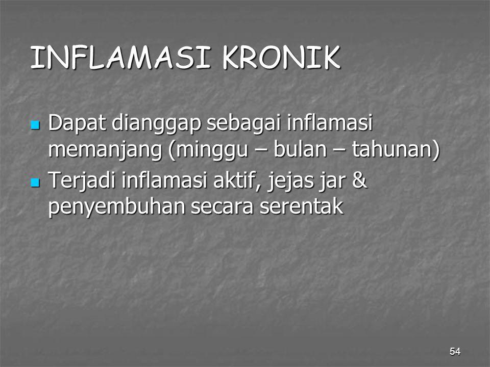 INFLAMASI KRONIK Dapat dianggap sebagai inflamasi memanjang (minggu – bulan – tahunan)