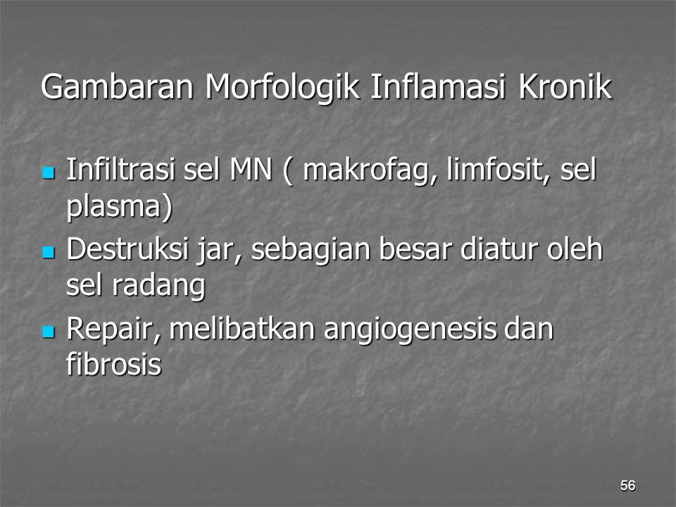 Gambaran Morfologik Inflamasi Kronik