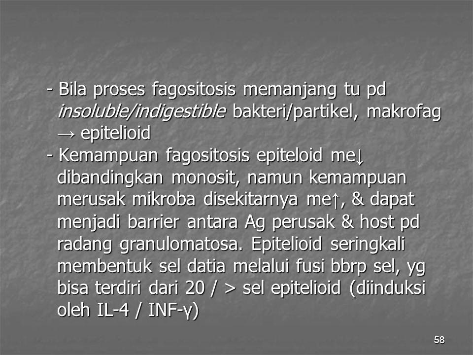 - Bila proses fagositosis memanjang tu pd