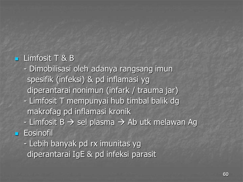Limfosit T & B - Dimobilisasi oleh adanya rangsang imun. spesifik (infeksi) & pd inflamasi yg. diperantarai nonimun (infark / trauma jar)