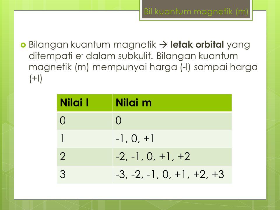 Bil kuantum magnetik (m)