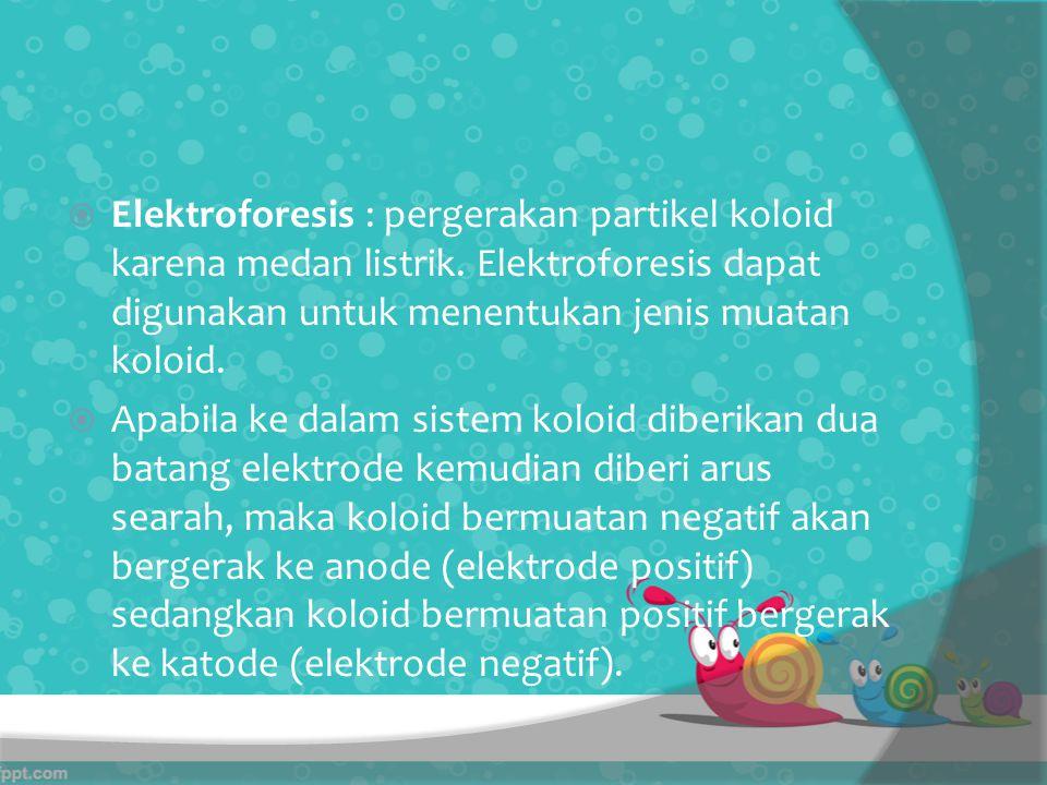 Elektroforesis : pergerakan partikel koloid karena medan listrik