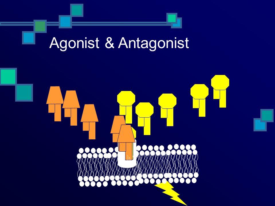 Agonist & Antagonist