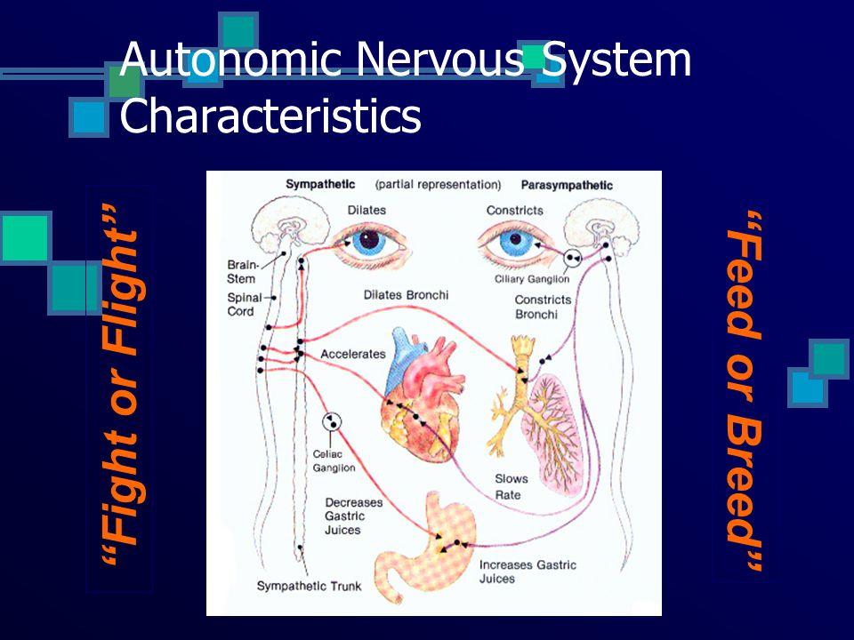 Autonomic Nervous System Characteristics