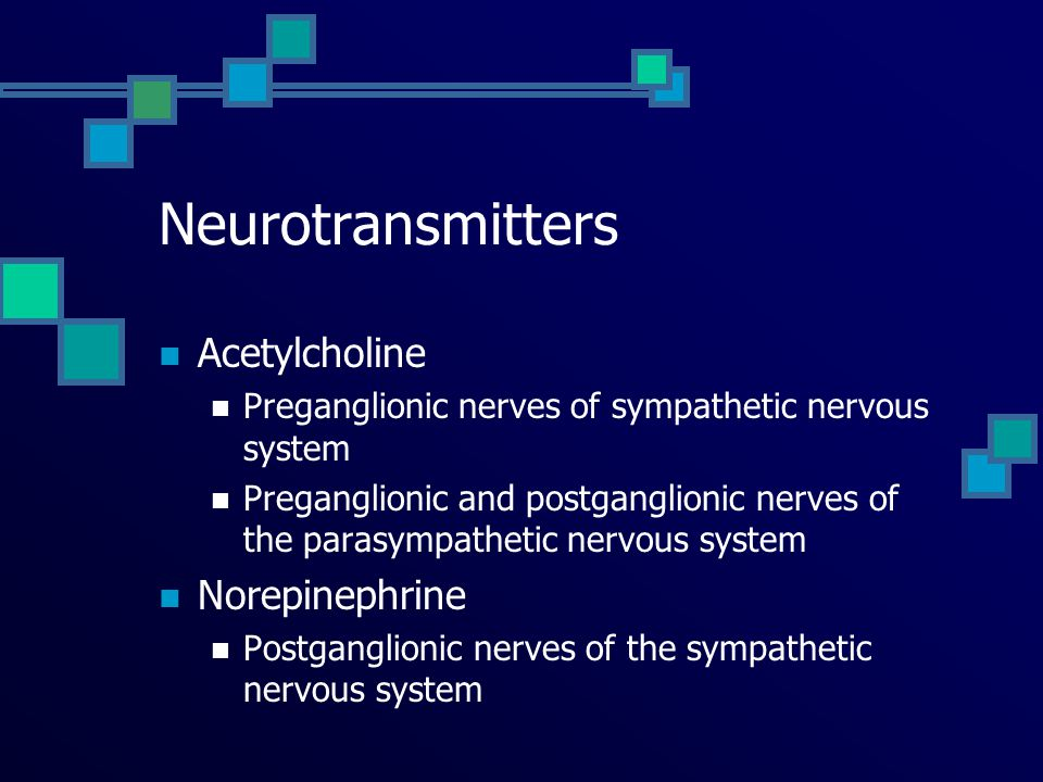 Neurotransmitters Acetylcholine Norepinephrine