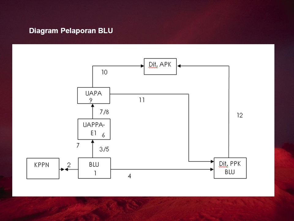 Diagram Pelaporan BLU