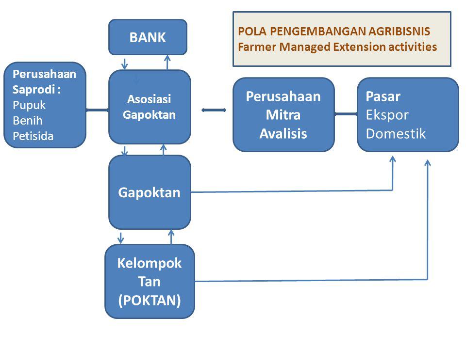BANK Perusahaan Mitra Avalisis Gapoktan Kelompok Tan (POKTAN)