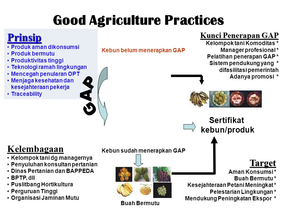 Good Agriculture Practices