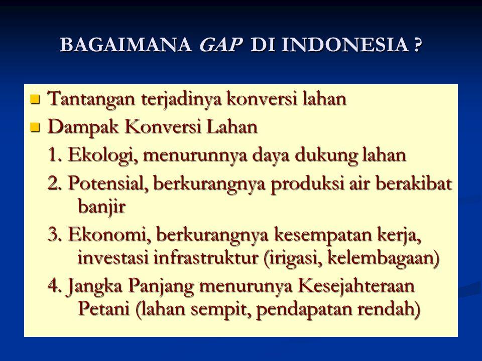 BAGAIMANA GAP DI INDONESIA