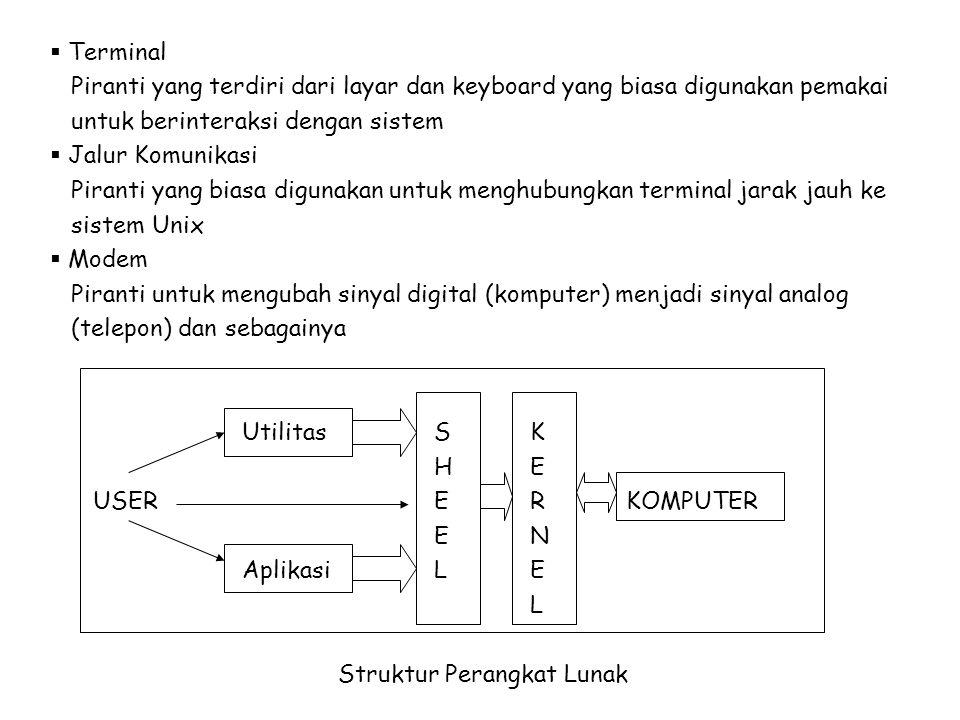 Terminal Piranti yang terdiri dari layar dan keyboard yang biasa digunakan pemakai. untuk berinteraksi dengan sistem.