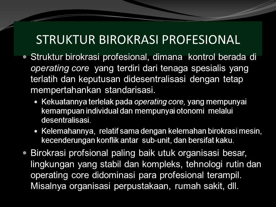 STRUKTUR BIROKRASI PROFESIONAL