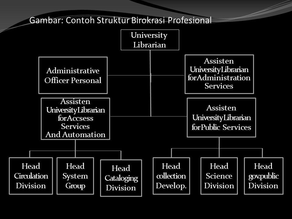 Gambar: Contoh Struktur Birokrasi Profesional