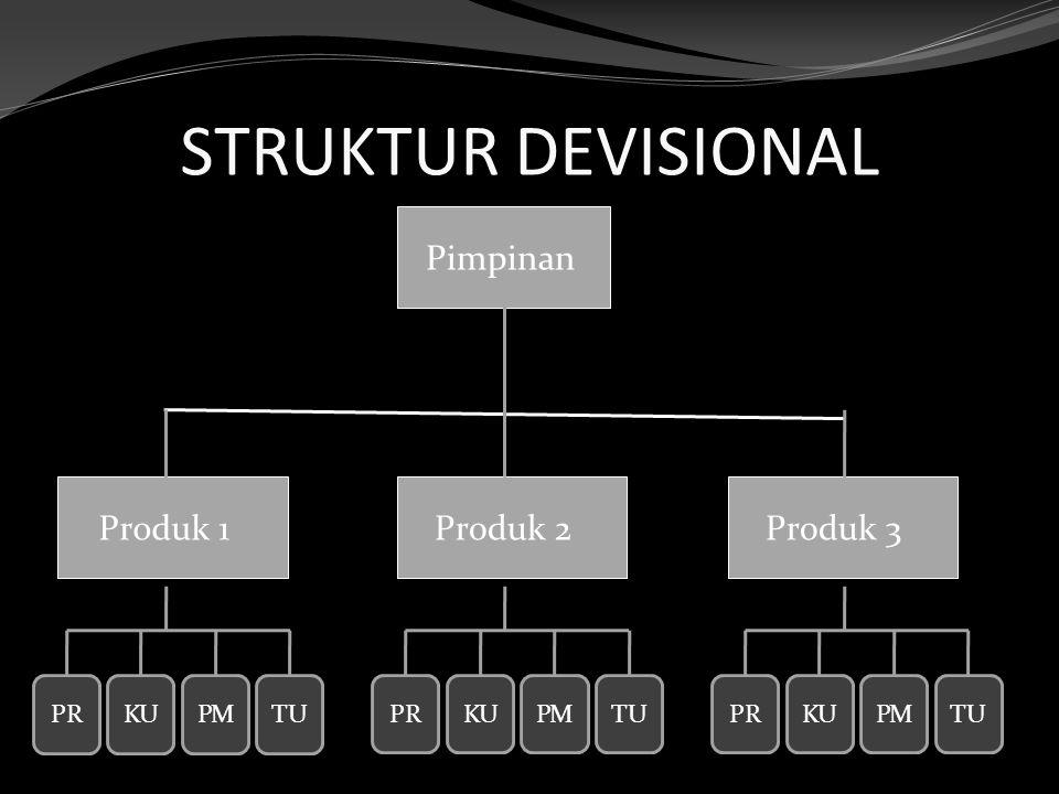 STRUKTUR DEVISIONAL Pimpinan Produk 1 Produk 2 Produk 3 PR KU PM TU