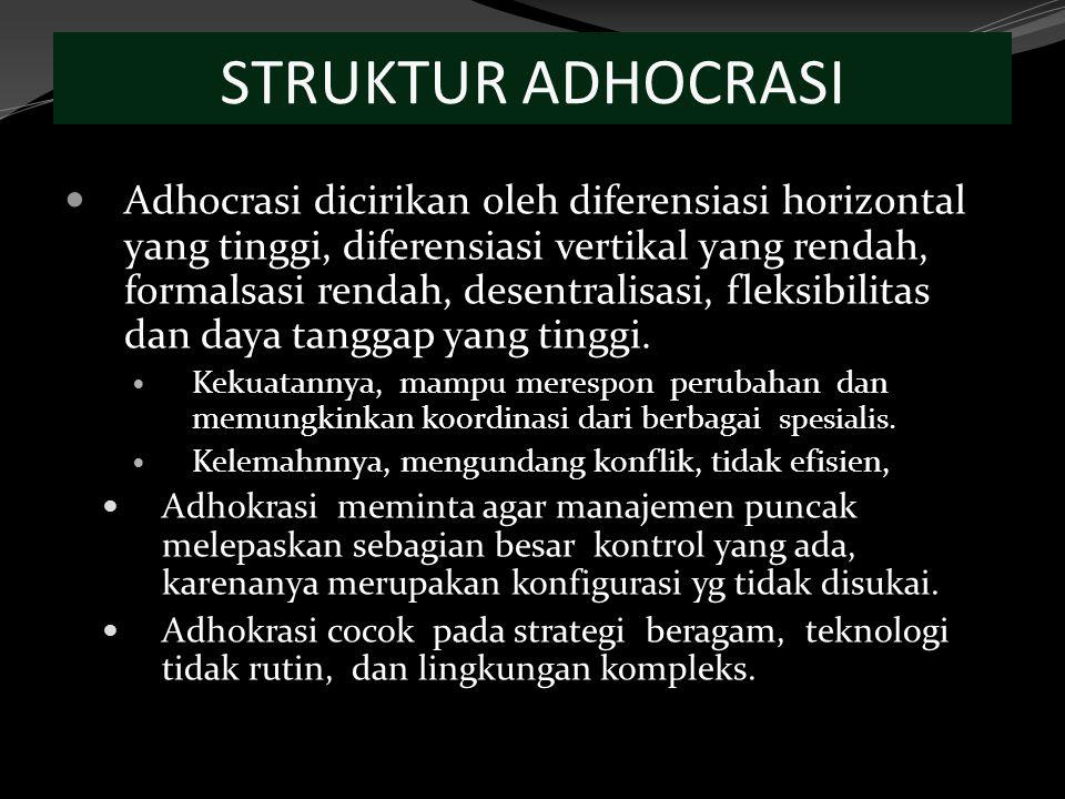 STRUKTUR ADHOCRASI