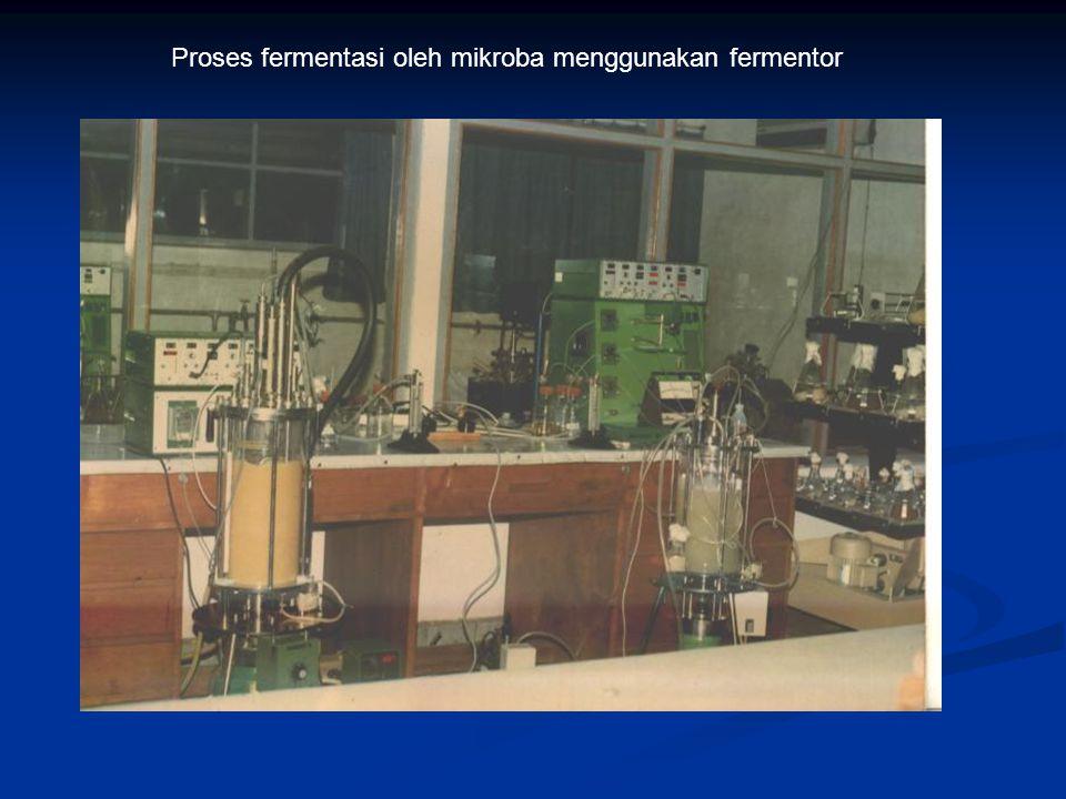 Proses fermentasi oleh mikroba menggunakan fermentor