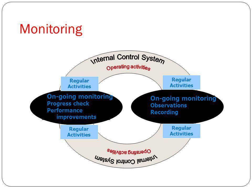 Internal Control System
