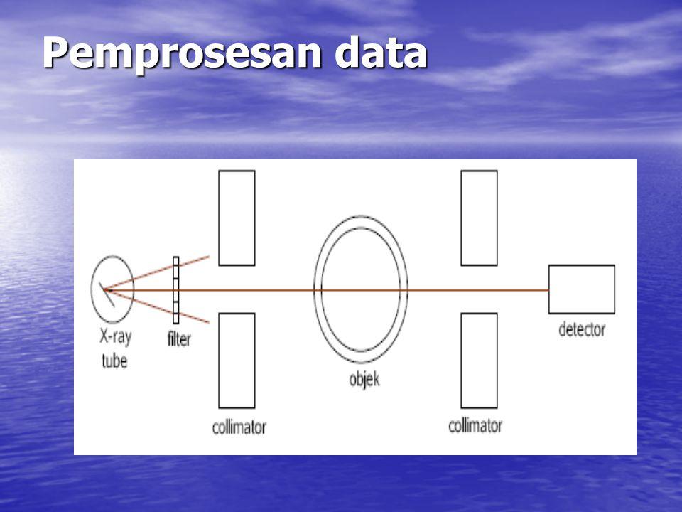 Pemprosesan data