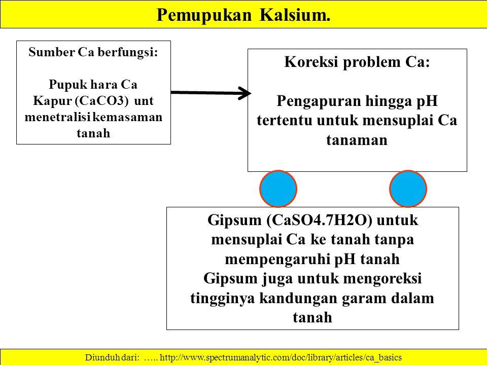 Pemupukan Kalsium. Koreksi problem Ca: