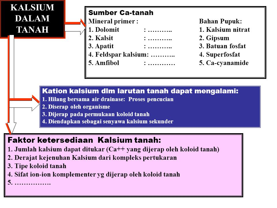 KALSIUM DALAM TANAH Faktor ketersediaan Kalsium tanah: Sumber Ca-tanah