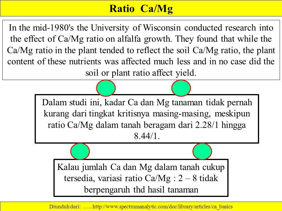 Ratio Ca/Mg