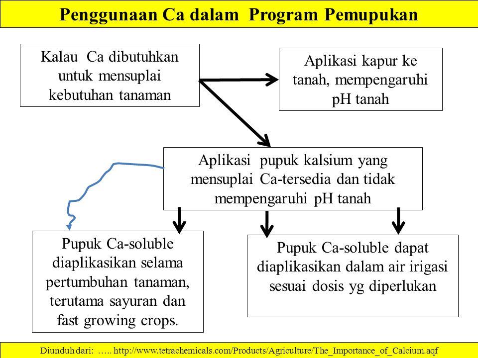Penggunaan Ca dalam Program Pemupukan