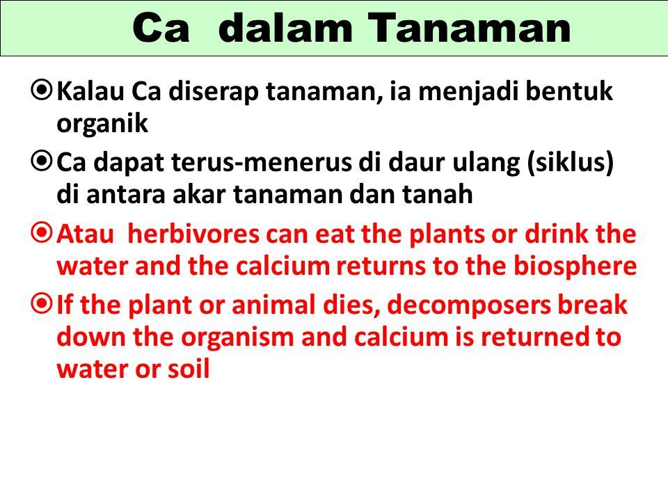 Ca dalam Tanaman Kalau Ca diserap tanaman, ia menjadi bentuk organik