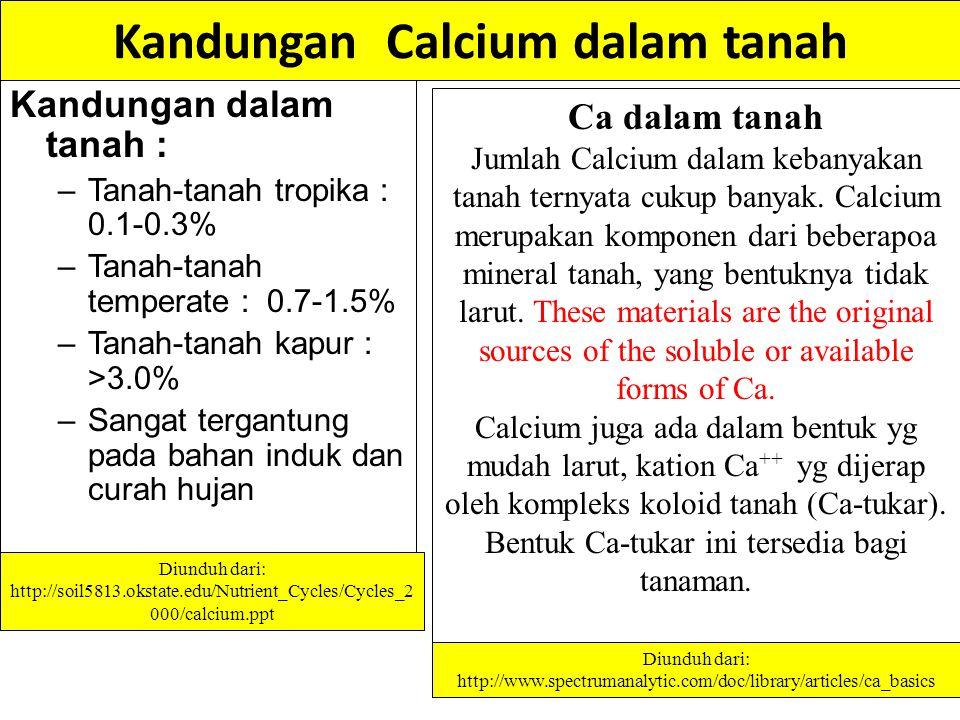 Kandungan Calcium dalam tanah