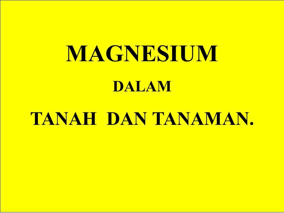MAGNESIUM DALAM TANAH DAN TANAMAN.