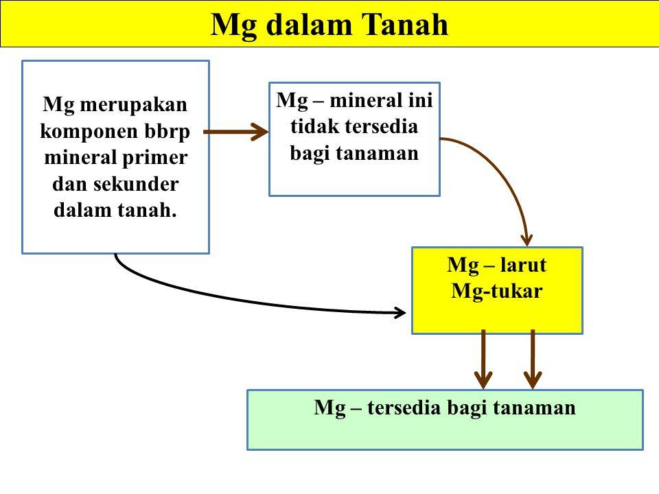 Mg dalam Tanah Mg merupakan komponen bbrp mineral primer dan sekunder dalam tanah. Mg – mineral ini tidak tersedia bagi tanaman.