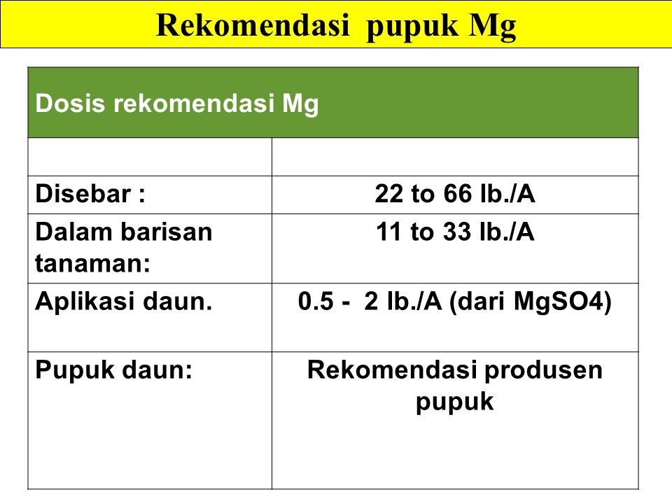 Rekomendasi produsen pupuk