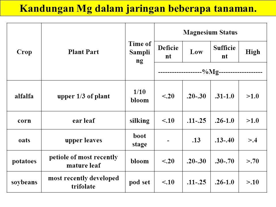 Kandungan Mg dalam jaringan beberapa tanaman.