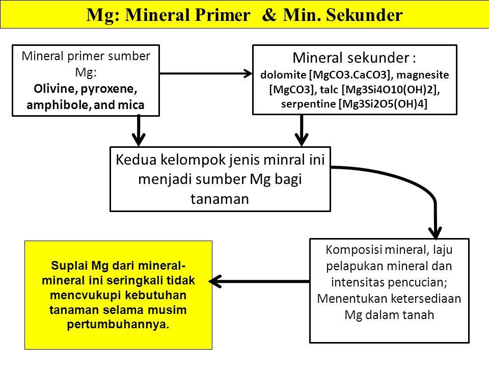Mg: Mineral Primer & Min. Sekunder