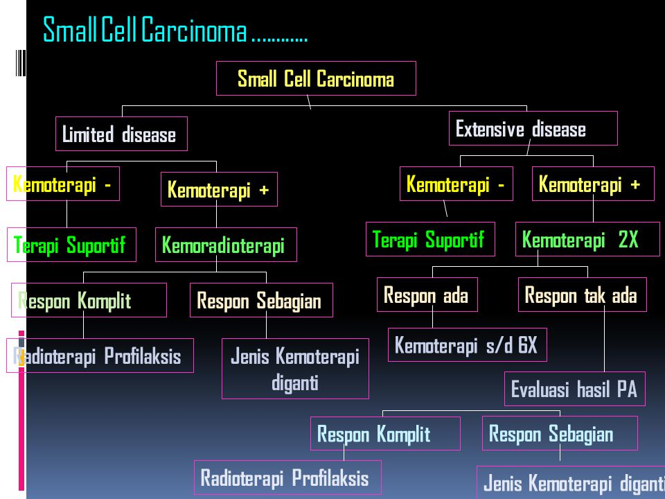 Small Cell Carcinoma ............ Small Cell Carcinoma