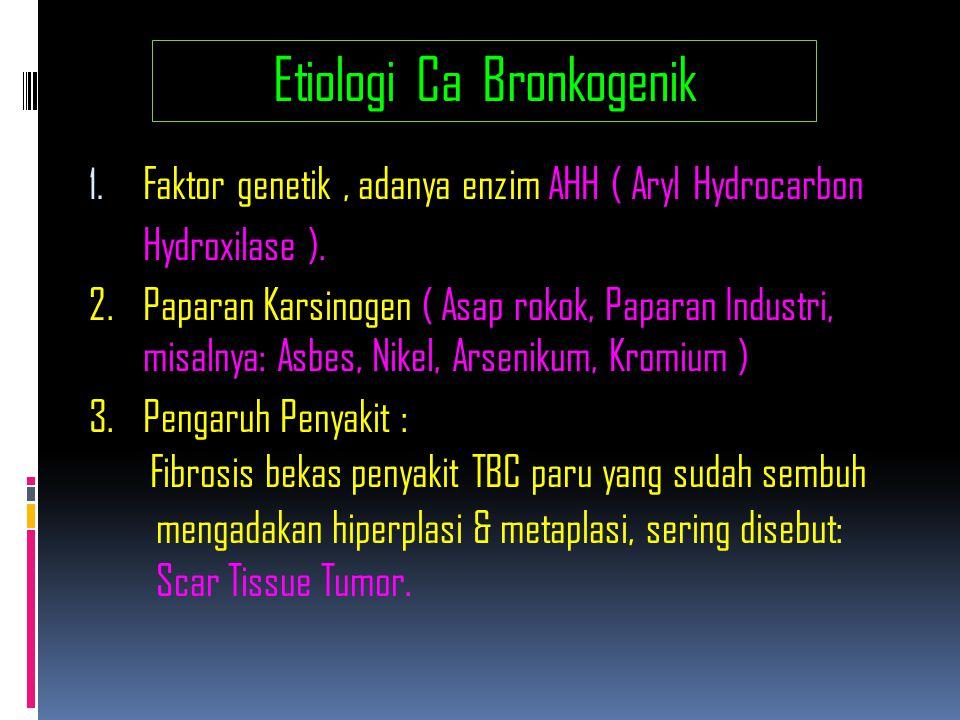 Etiologi Ca Bronkogenik