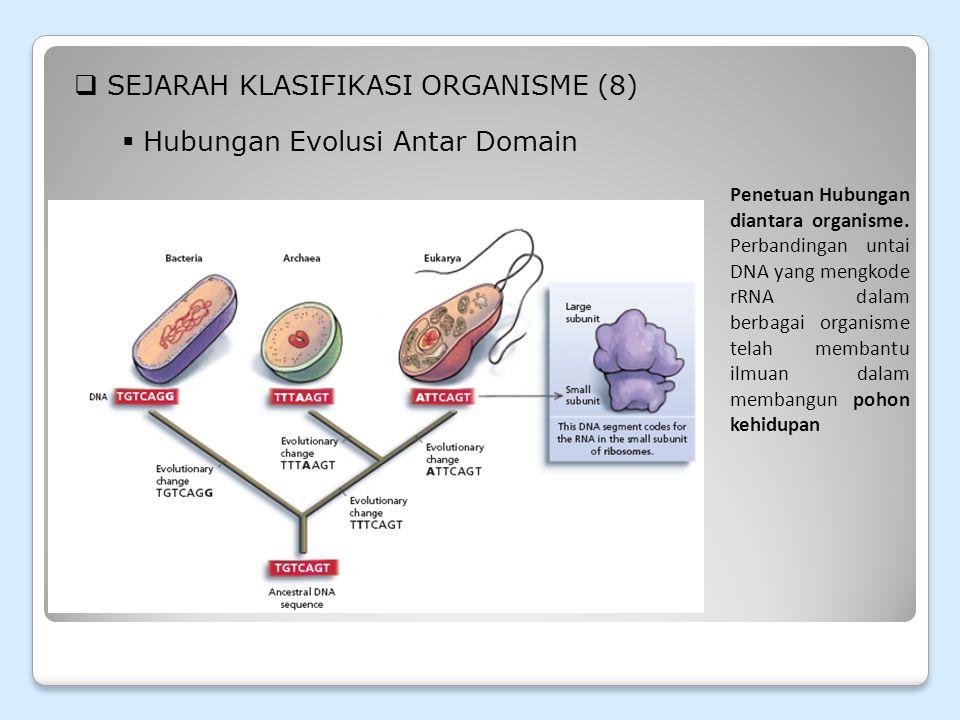SEJARAH KLASIFIKASI ORGANISME (8)