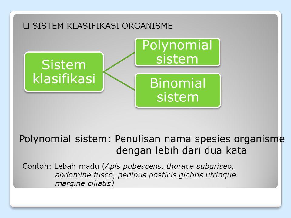 Sistem klasifikasi Polynomial sistem Binomial sistem