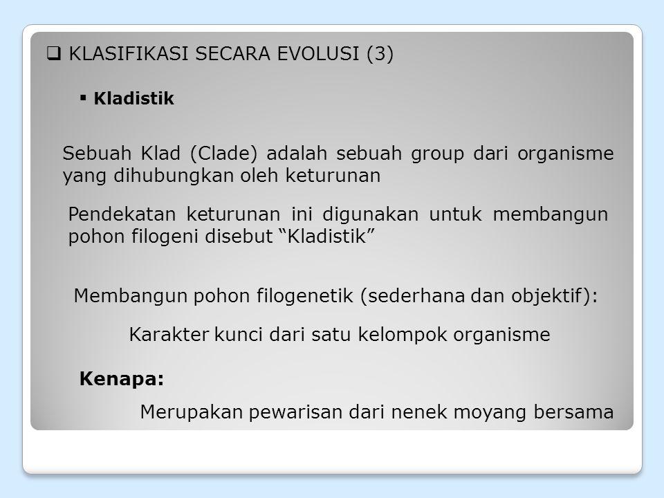 KLASIFIKASI SECARA EVOLUSI (3)