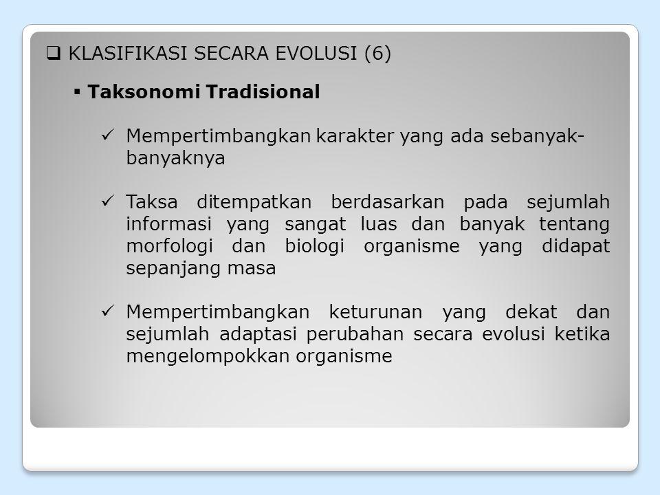 KLASIFIKASI SECARA EVOLUSI (6)