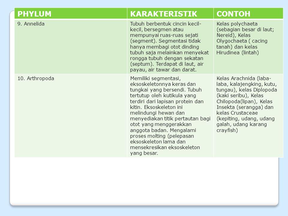 PHYLUM KARAKTERISTIK CONTOH 9. Annelida