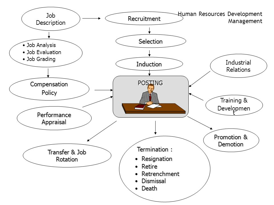 Human Resources Development Management