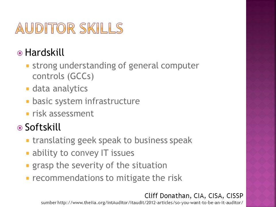 Auditor Skills Hardskill Softskill