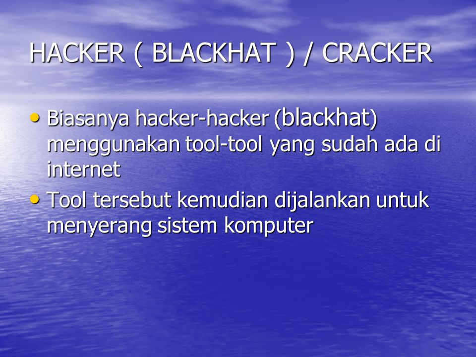 HACKER ( BLACKHAT ) / CRACKER
