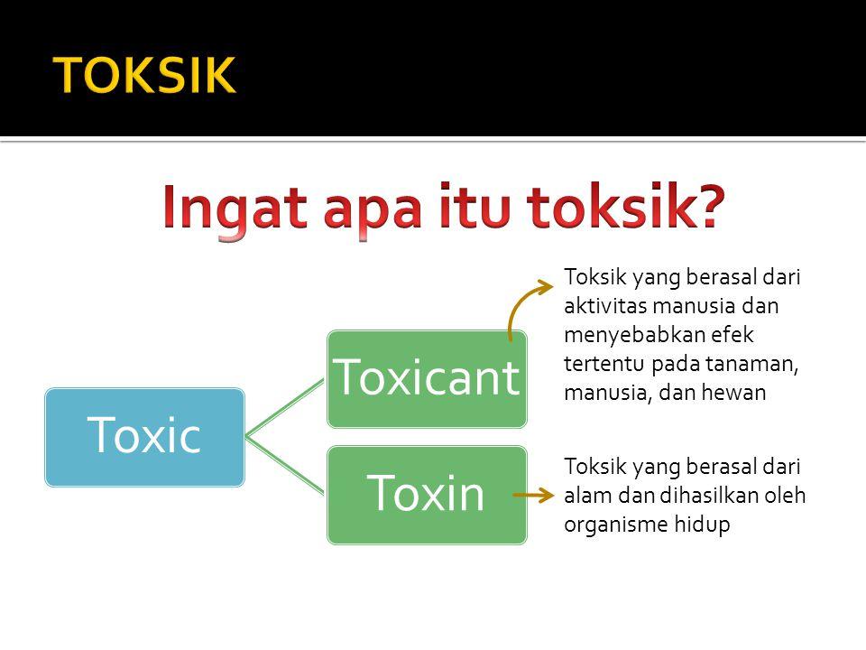 Ingat apa itu toksik TOKSIK
